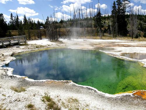 Parc de Yellowstone aux Etats-Unis